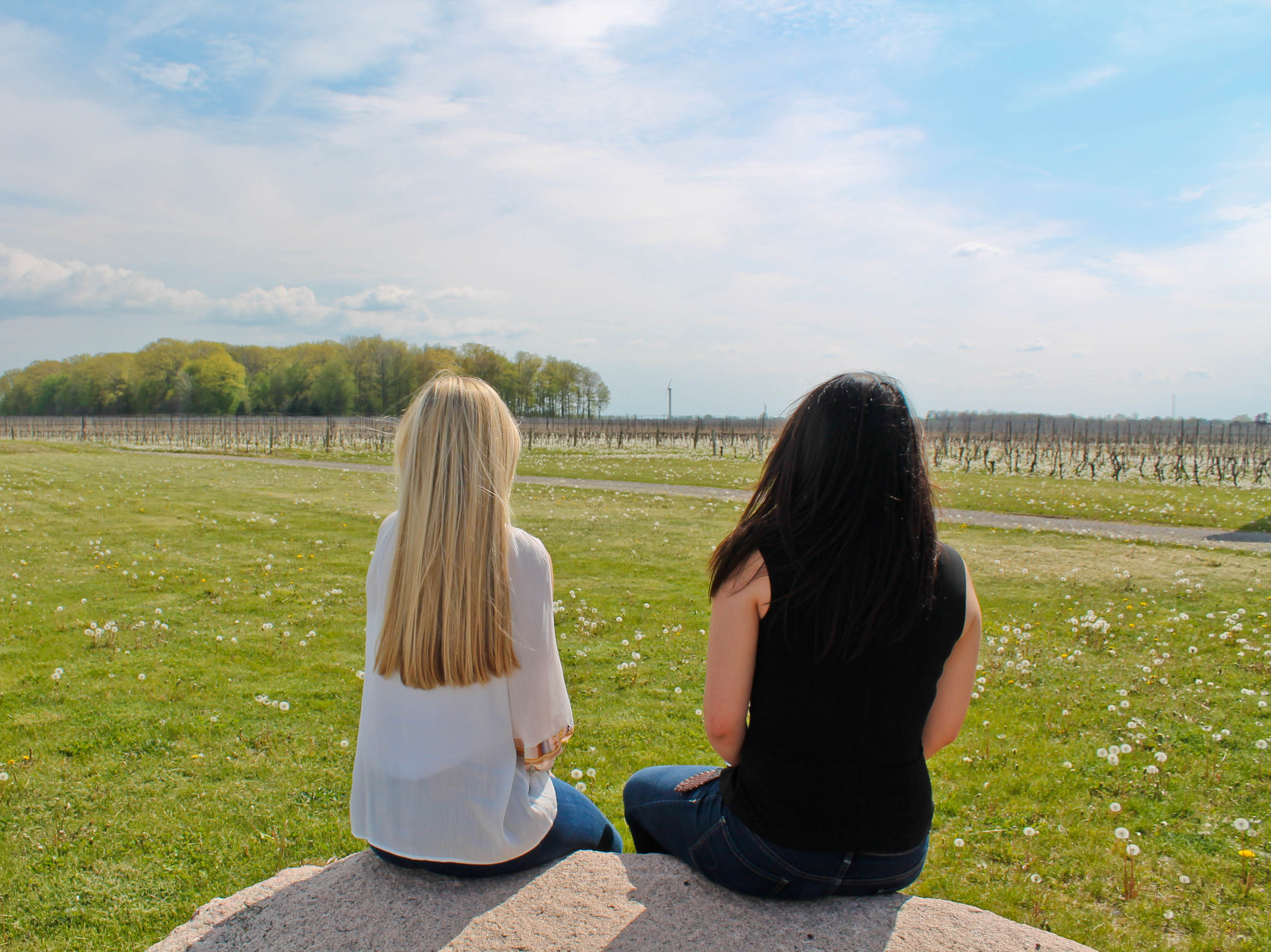 Niagara wineries of Niagara-on-the-lake - the pink backpack travel blog