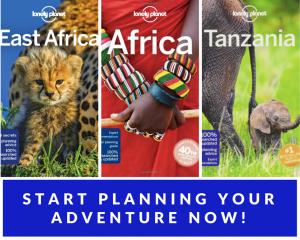 planning a trip to mwanza tanzania