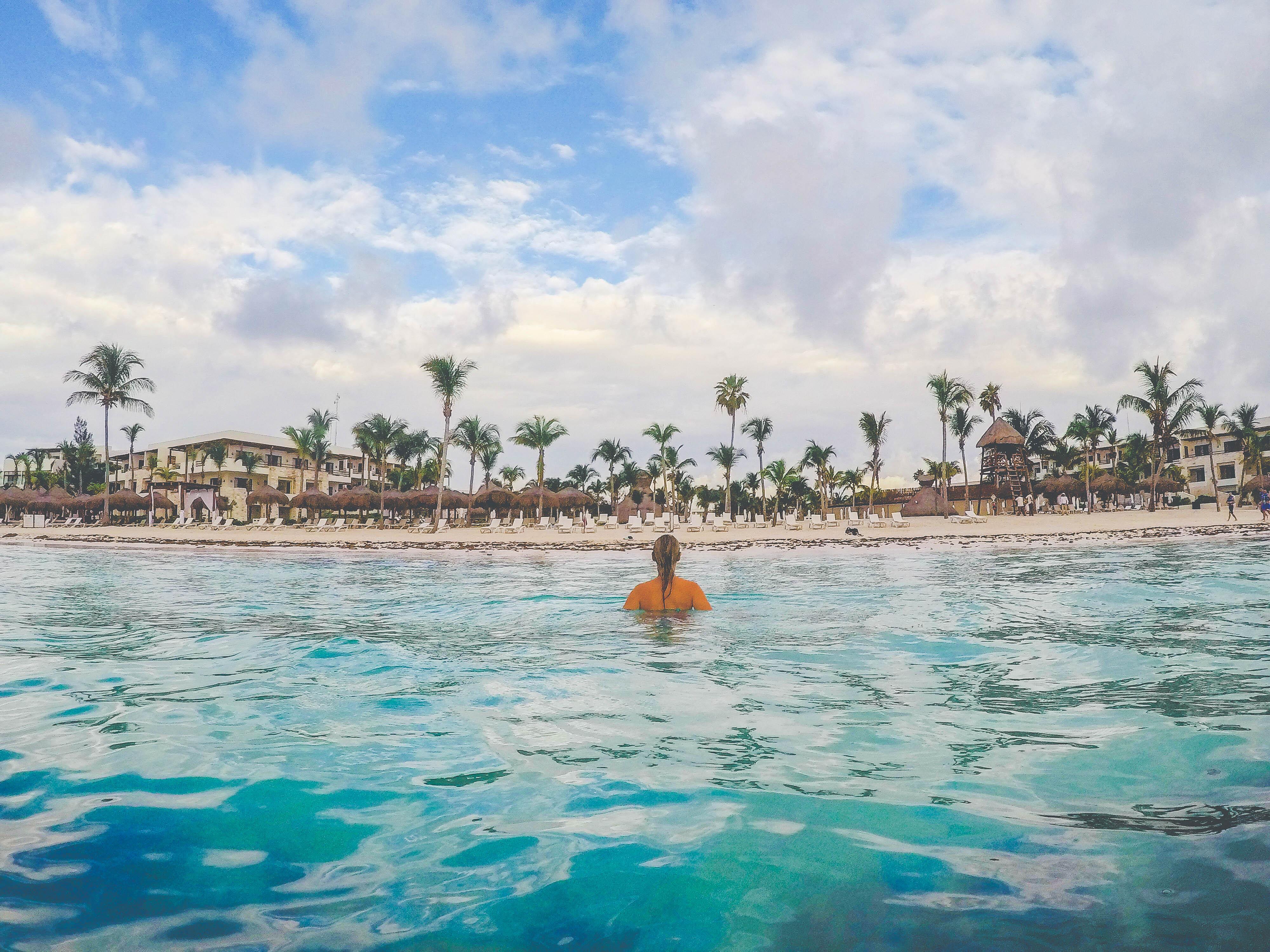 swimming with akumal turtless in Akumal Mexico