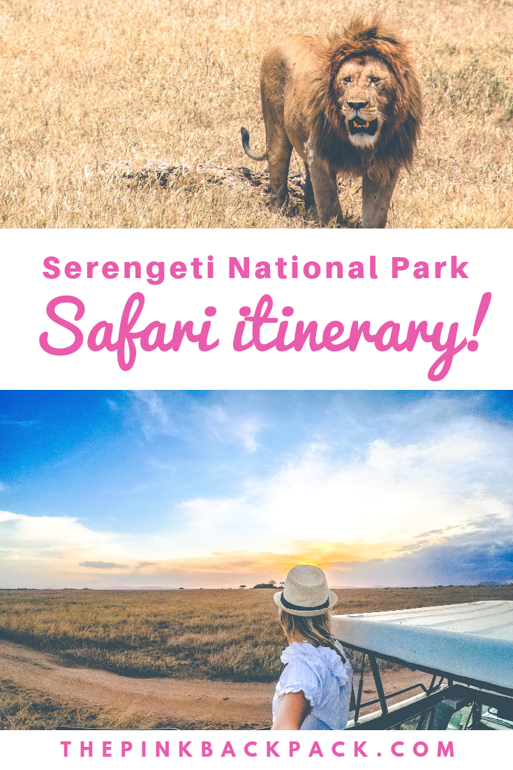 serengeti safari itinerary
