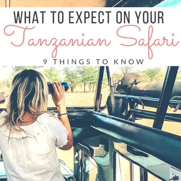 9 Things to Expect on a Serengeti Safari